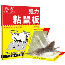 20张粘鼠板超强力老鼠贴胶沾神药加大加厚灭鼠捕鼠正品家用一窝端