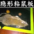 皇猫8张装老鼠贴强力粘鼠板黏鼠胶抓老鼠捕鼠器家用耗子胶