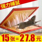15张老鼠贴超强力粘鼠板日本版抓大老鼠夹药胶家用捕鼠器灭鼠神器